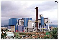 Biomasa energética
