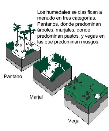Industrias contaminantes: factores geológicos y climatológicos