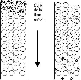 Cromatografía por exclusión molecular