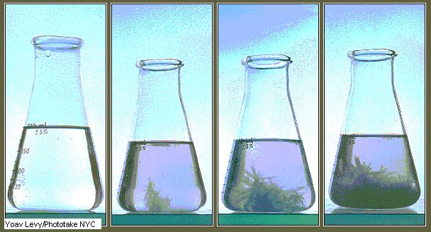 Calibrado de material volumétrico
